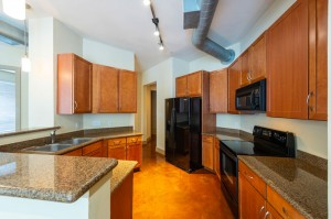 Two Bedroom Apartments for Rent in Houston, TX - Apartment Kitchen
